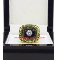 1982 Miami Dolphins America Football Conference Championship Ring, Custom Miami Dolphins Champions Ring