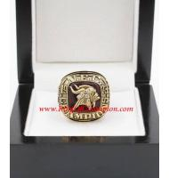 1973 Minnesota Vikings National Football Conference Championship Ring, Custom Minnesota Vikings Champions Ring